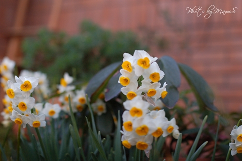 Blog_6339