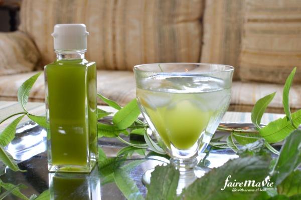 緑色のミントシロップ